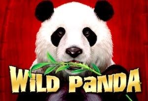 Wild Panda Slot Game